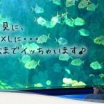 【明日】浜松にイってきます♪